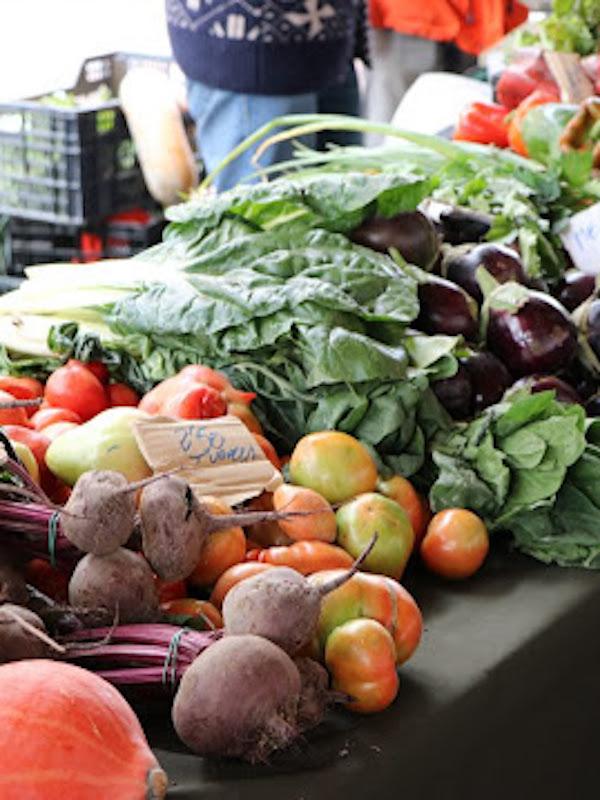 Por la reapertura de los mercados agroecológicos de Zaragoza, Huesca y Teruel-Andorra