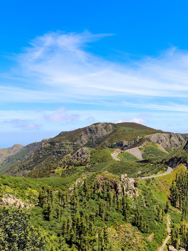 Parques Nacionales explican online a los Reyes de España el impacto del COVID-19 en la naturaleza