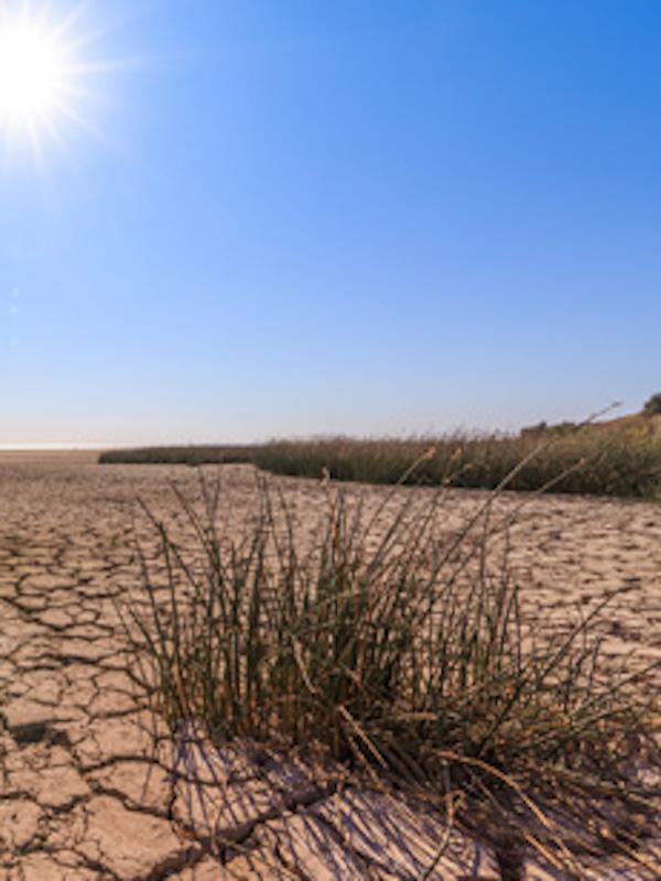 El aumento de lluvia en los modelos climáticos globales agravará la 'crisis climática'