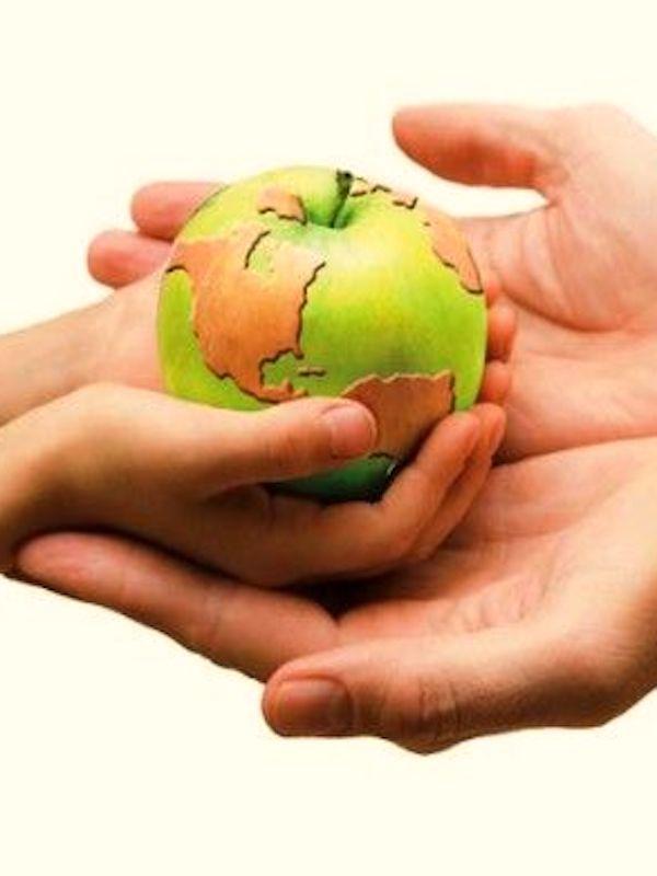 Europa incide en la necesidad de garantizar la sostenibilidad del sistema alimentario