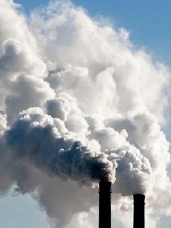 Células fotosintéticas artificiales para la fijación del CO2