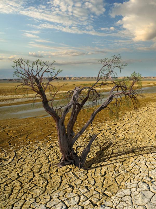 Un clima más húmedo 'agrava' la crisis climática