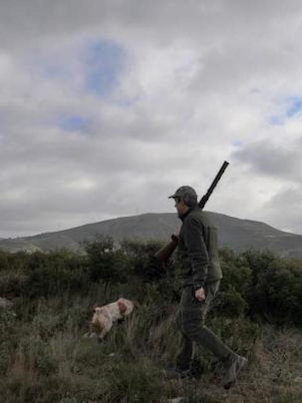 A los Tribunales la orden de caza de Madrid