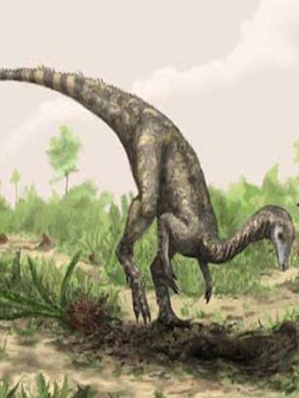 Las diferencia entre dinosaurios machos y hembras es casi imperceptible
