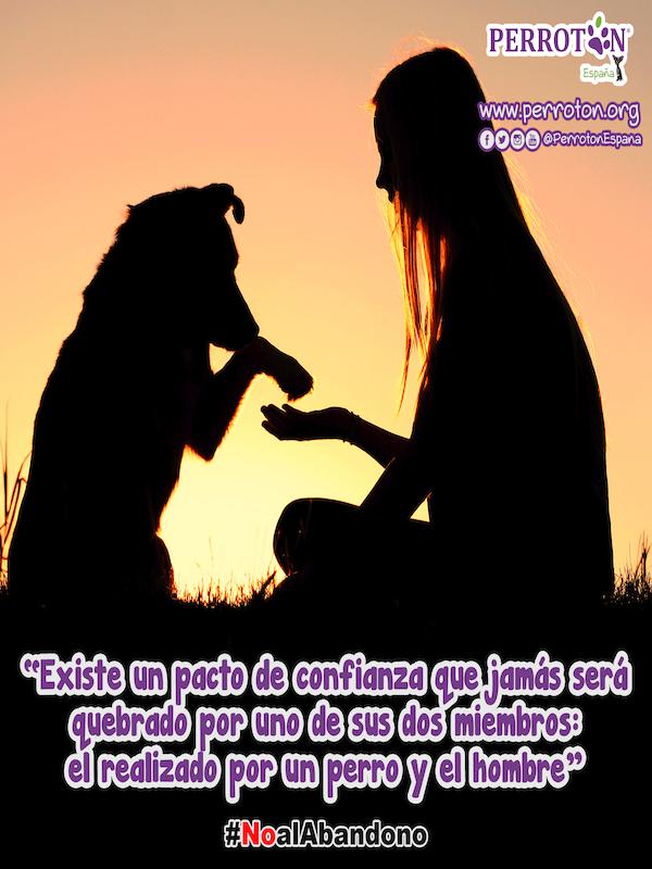 Campaña de concienciación ciudadana contra el abandono animal que realiza Perrotón España