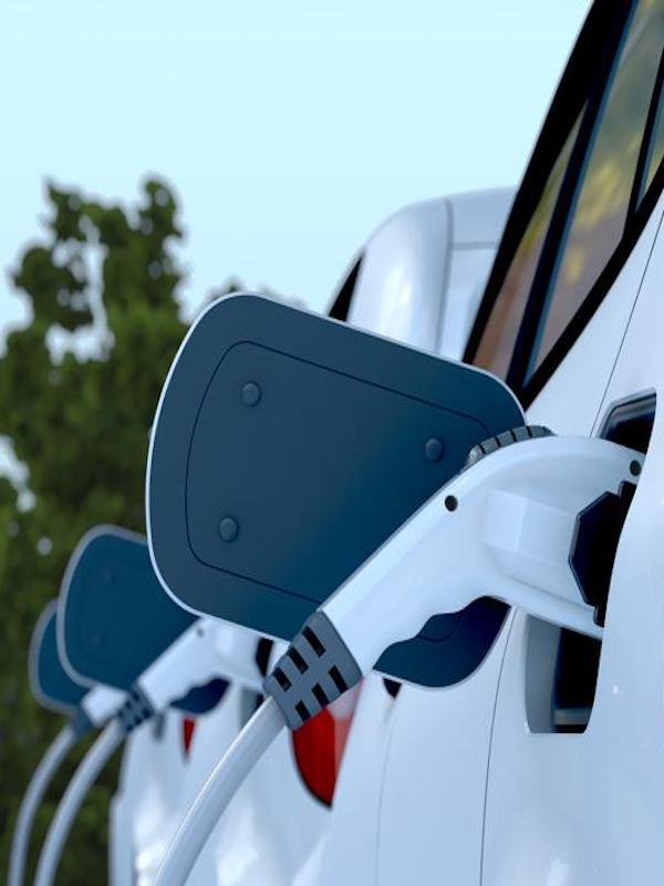 La única salida de Nissan es el coche eléctrico a pesar de las políticas destructivas de inversión y empleo de la Generalitat de Catalunya