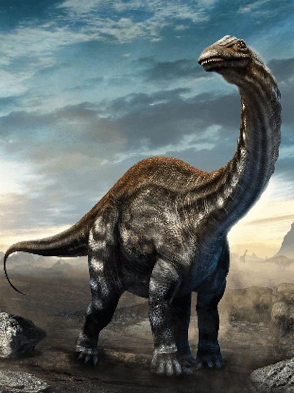 Visión de la evolución en vertebrados mediante los dientes de dinosaurio