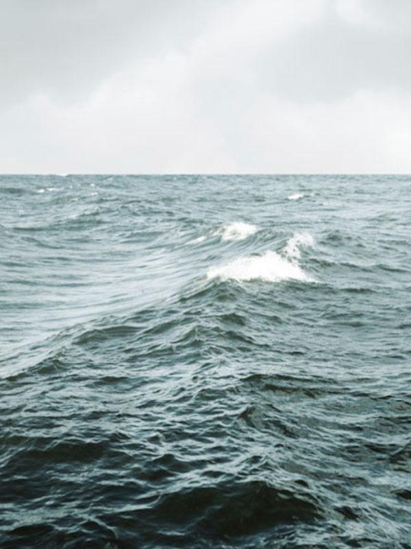 La actividad humana vs nivel del mar