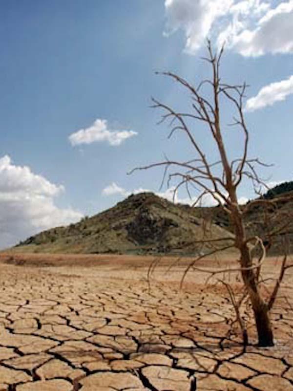 Una Ley de cambio climático con falta de 'ambición'