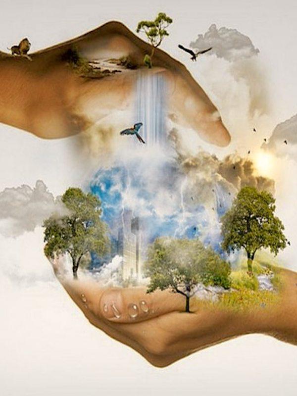El gravísimo deterioro de la biodiversidad nos pasará factura