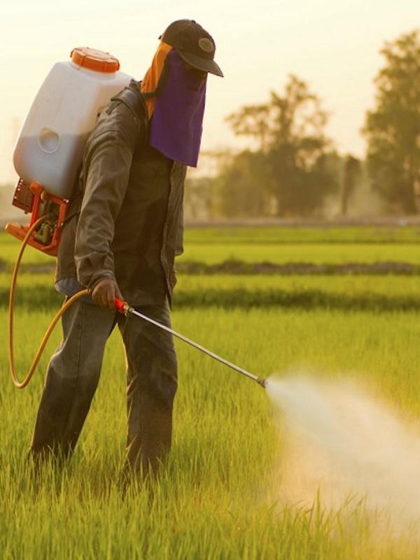 Europa quiere reducir a la mitad el uso de pesticidas en 2030