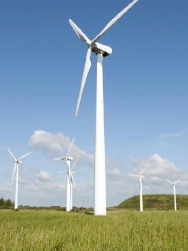 Iberdrola, Endesa y Acciona de la mano de las energías renovables 'al alza'