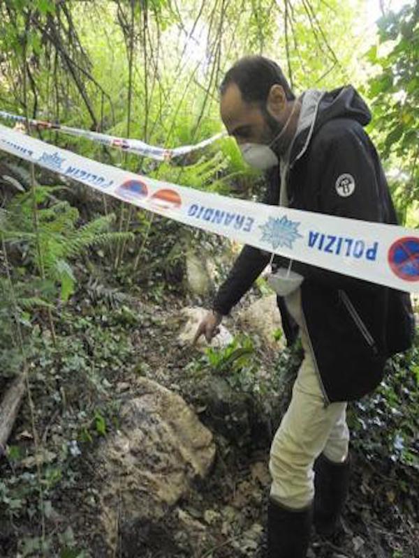Bosques de Bizkaia y Huesca 'contaminados' con lindano