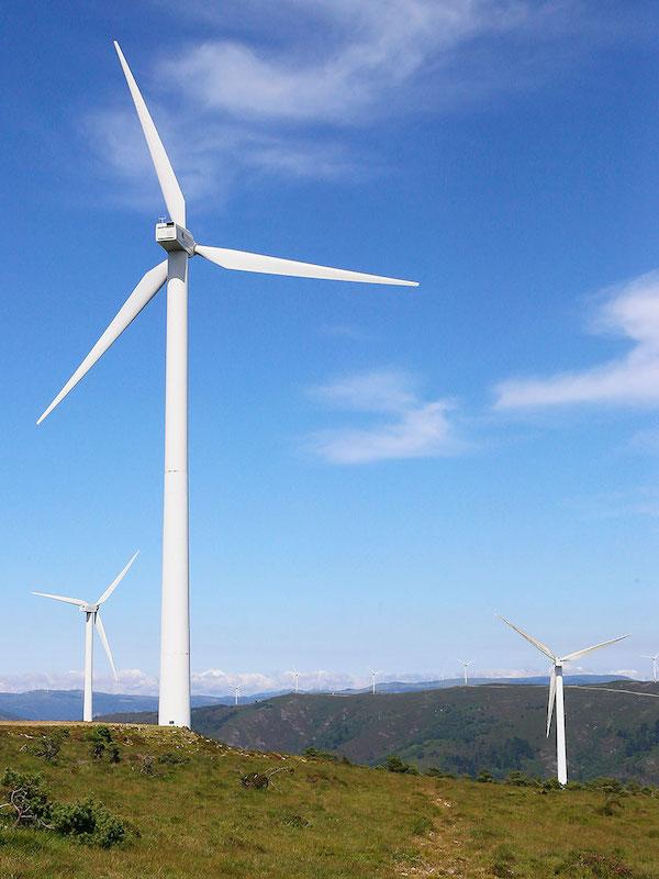 Cantabria tendrá que indemnizar a Sniace y Helican por sus gastos en el concurso eólico