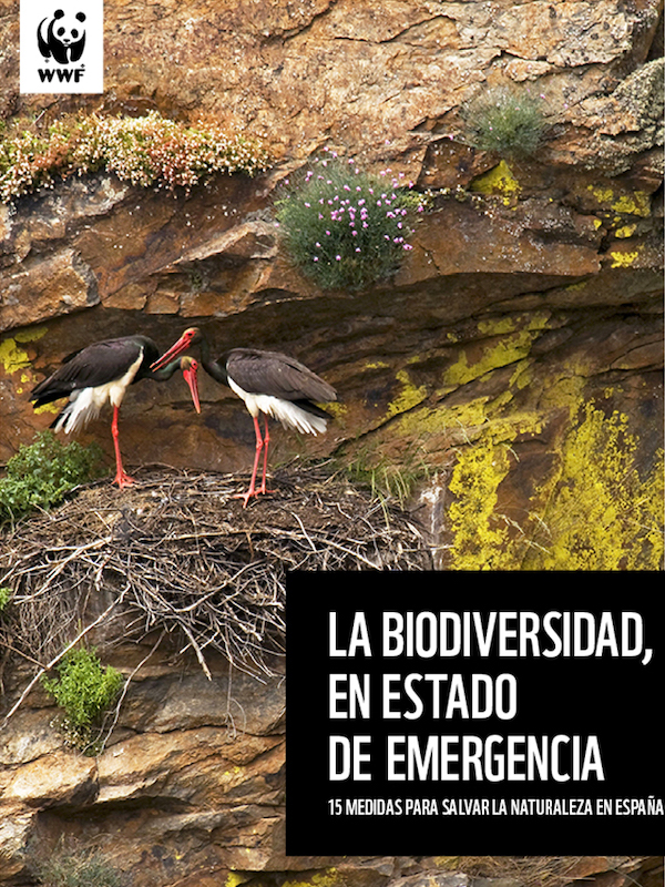 Quince medidas para salvar la naturaleza en España