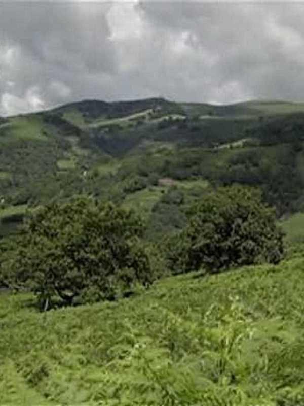 La Comunidad de Madrid es la región de la península ibérica con más espacios en la Red Natura 2000