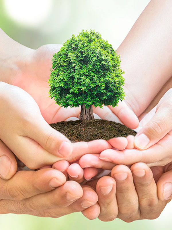 La gestión ambiental mexicana requiere una nueva ética y fortalecimiento del marco legal