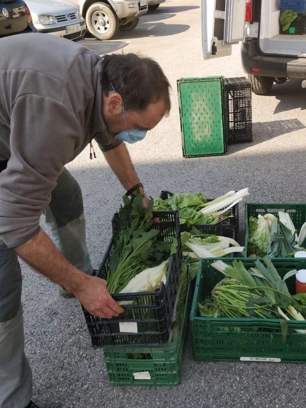 La pequeña agricultura, y la agricultura familiar suministran el 80% de las necesidades del Planeta