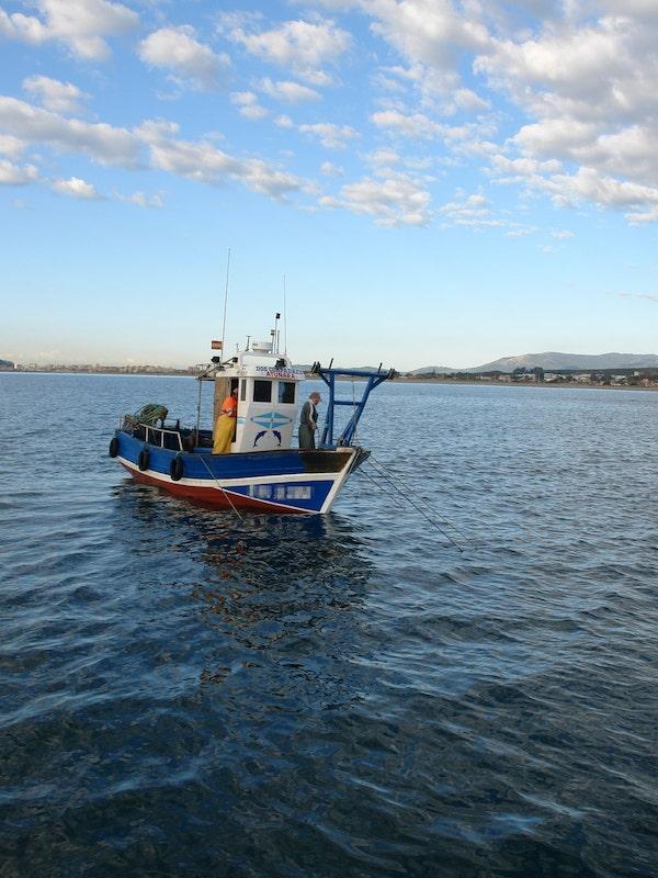 Este Gobierno no 'pita', el arrastre en el Mediterráneo no cumple con la normativa europea
