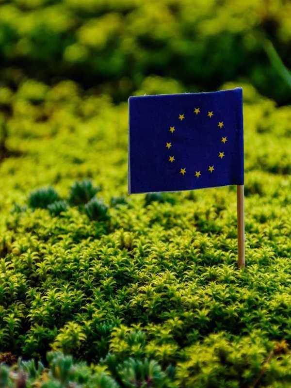 Gobierno Vasco ha puesto en marcha esta semana una campaña de comunicación para impulsar 'una recuperación verde'