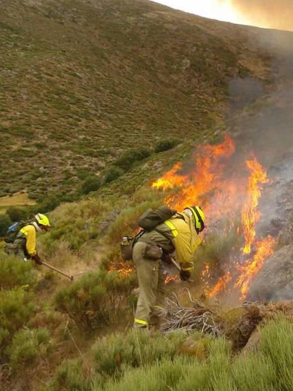El Gobierno aborda con las CCAA el despliegue de los medios del dispositivo de extinción de incendios forestales