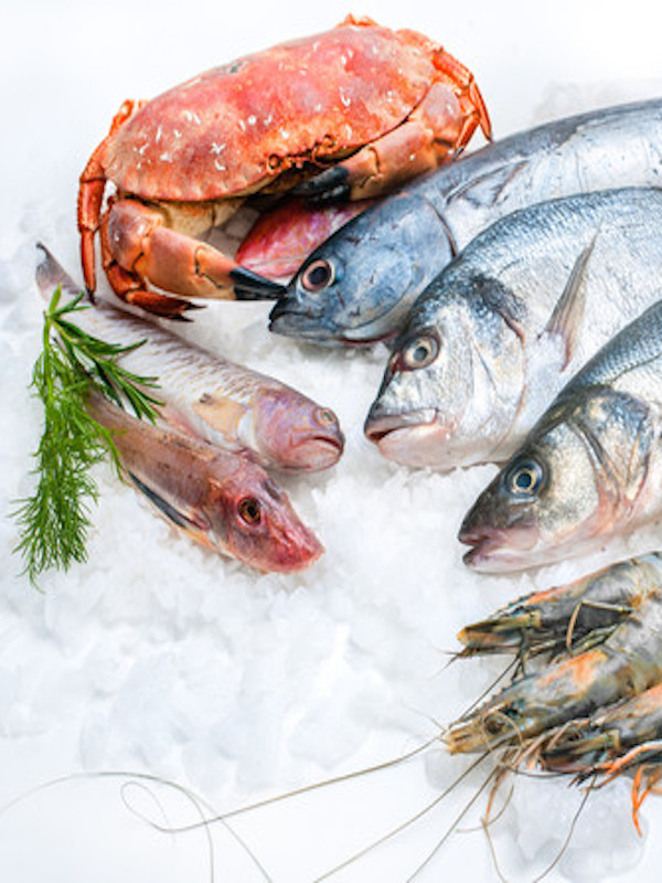 El pescado y el 'maldito' mercurio