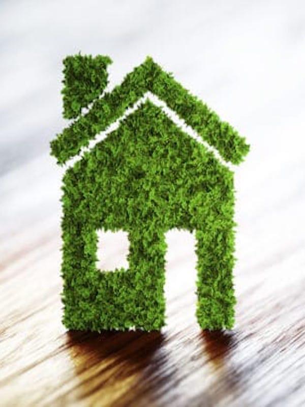 Corcho y pino mediterráneo una buena idea para la construcción sostenible