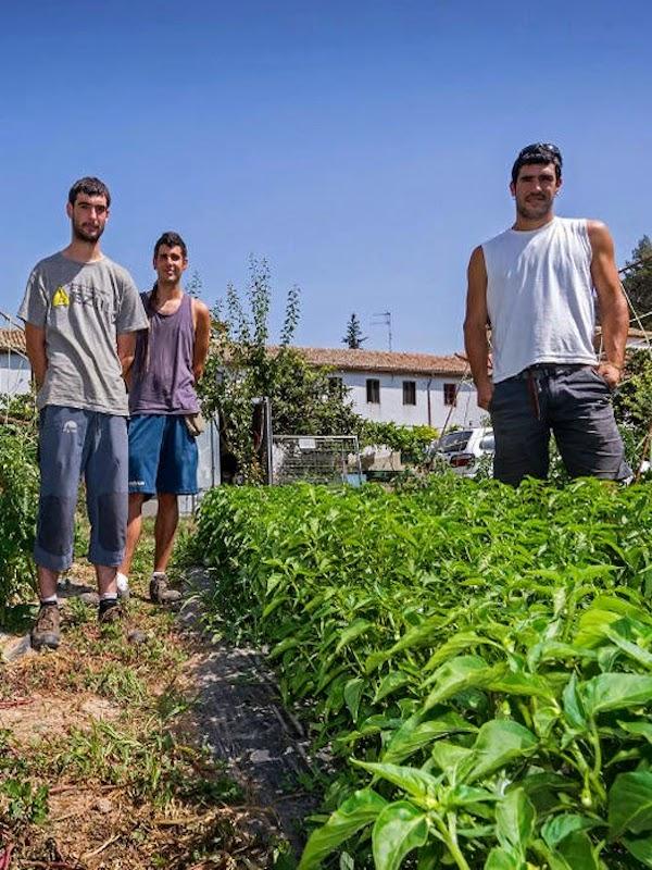 Consumiendo productos ecológicos creamos oportunidades para que los jóvenes navarros puedan vivir en sus pueblos