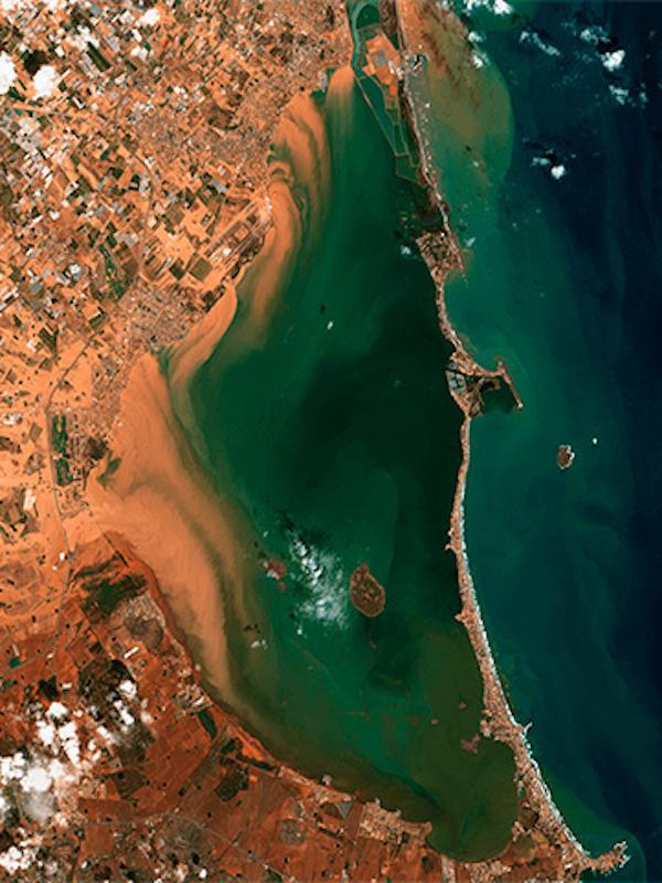 España se pone 'manos a la obra' con el Mar Menor