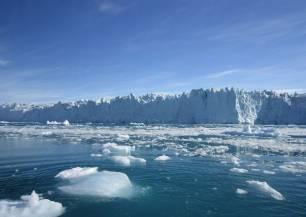 Cambios masivos en los animales del Ártico por el calentamiento global