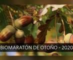 ¡El Biomaratón de otoño ha llegado!