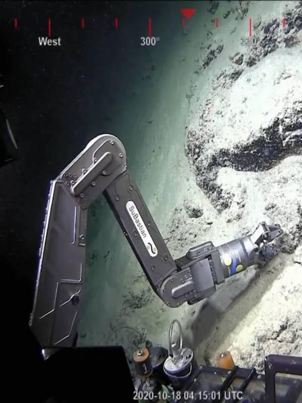 Descubierto un nuevo arrecife de coral en la Gran Barrera de Australia, el primero en 120 años