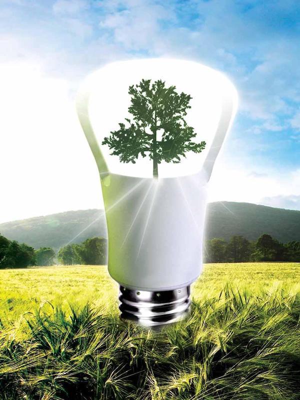 El premio 'Fomenta la Bioenergía 2020' tiene tanto merito como quién lo recibe