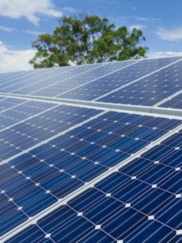 La energía fotovoltaica será la protagonista del plan de recuperación