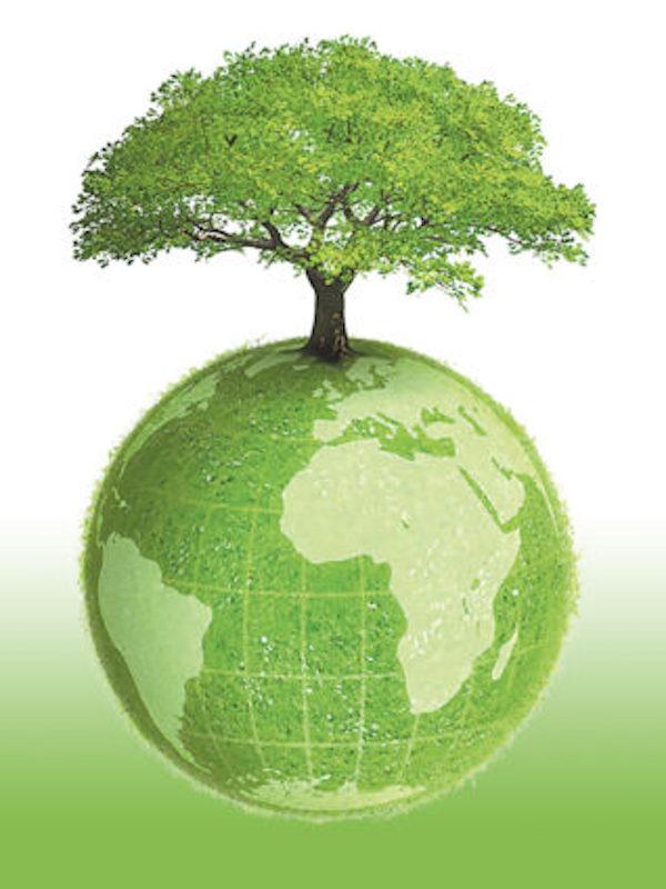 Tenerife quiere potenciar el empleo 'verde'