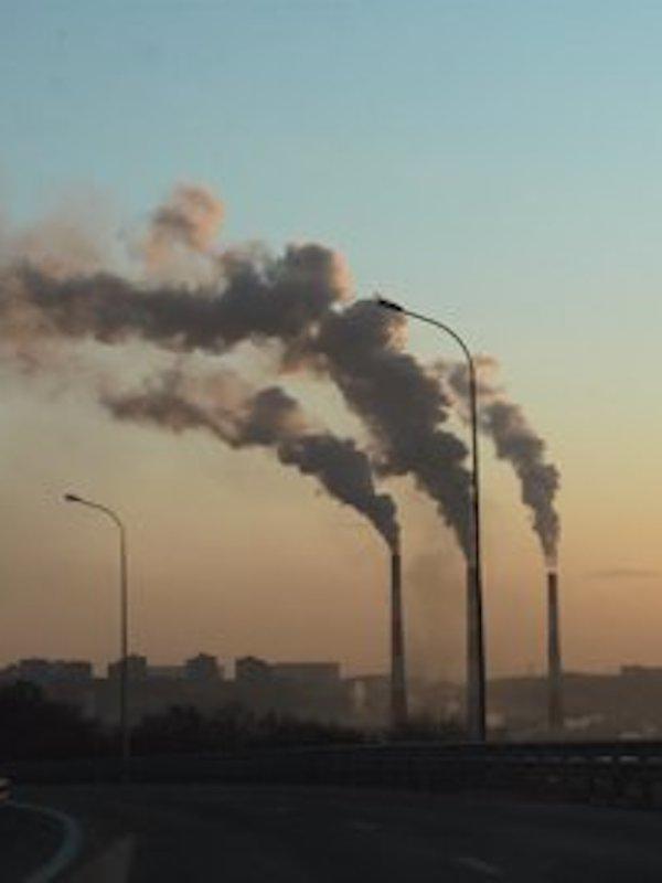La Coalición COP26 recibe el respaldo de la población y cientos de organizaciones