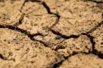 Acuerdo de Glasgow: una iniciativa dirigida a realizar agendas climáticas nacionales