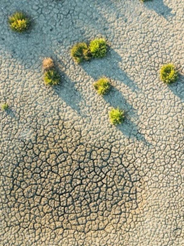 ¿Qué significa tener capacidad de adaptarse a la modificación global del clima?, entrevista a Gabriel Borras