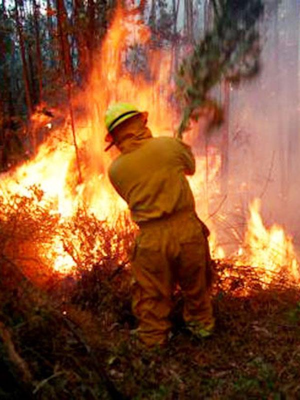 Aragón amplia presupuestos para la extinción de incendios
