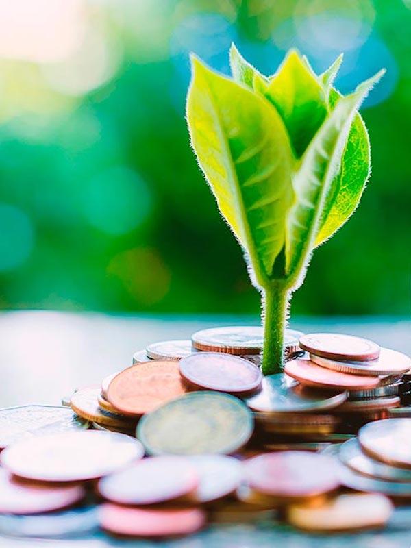 Transición ecológica. El MITECO, el Gobierno de Castilla y León y la FEMP firman el protocolo para elaborar los Convenios de Transición Justa de tres áreas del norte de la comunidad