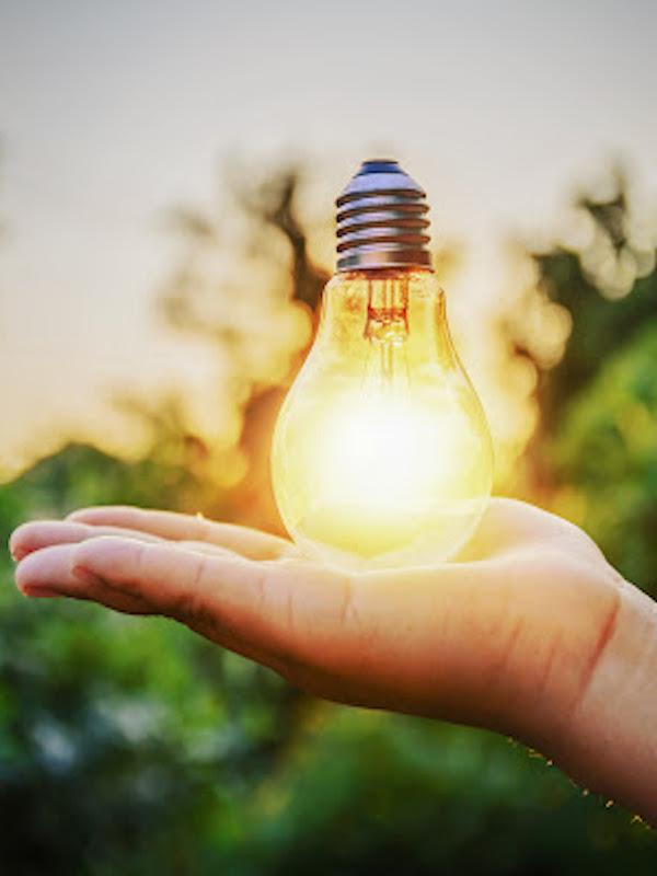 Sostenibilidad. Andalucía apuesta por la contratación pública verde
