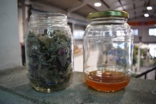 Producir combustible a partir de residuos, la tecnología de Greene Waste To Energy