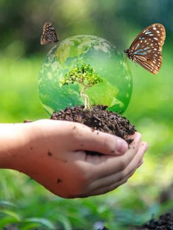 Naturaleza. Los derechos humanos y la conservación de la 'biodiversidad'