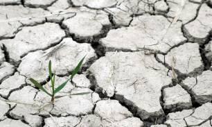 Cambio climático. La relación entre calentamiento global y las enfermedades infecciosas 'desconocida por el 50% de la población'