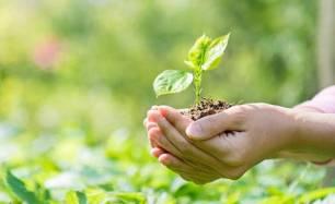 Medio ambiente. El impacto medioambiental de los detergentes 'al descubierto'