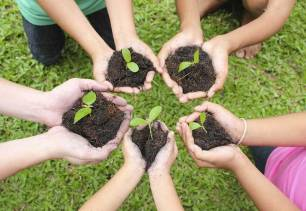 Medio ambiente. III edición del Sello Ambiental 'Centro Educativo Sostenible' de Castilla y León