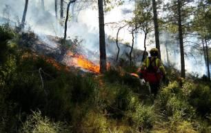Medio ambiente. Los incendios controlados reducen el riesgo de sufrir grandes incendios forestales