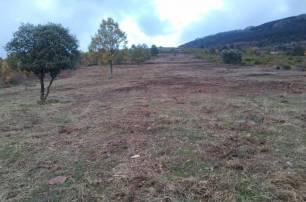 Medio ambiente. 'fulminan' zonas de pasto en la Reserva de la Biosfera de la Sierra del Rincón