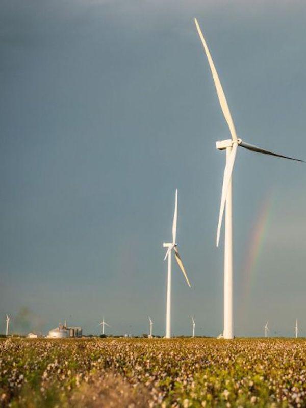 Energías renovables. Endesa utiliza la realidad virtual ante el Covid-19 para supervisar sus construcciones 'verdes'