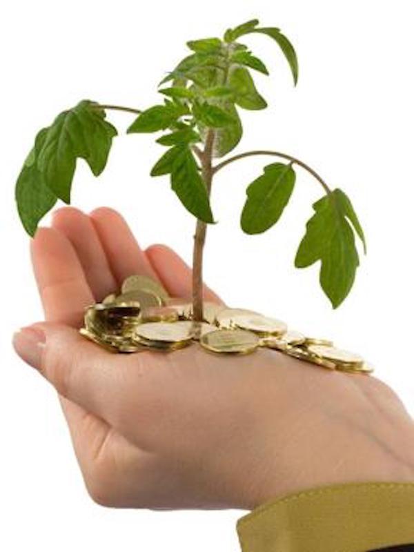 Inversiones en verde. Banca March sa alía con Amundi-CPR para el lanzamiento de un fondo de impacto y sostenible